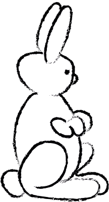 Bunny-23.png